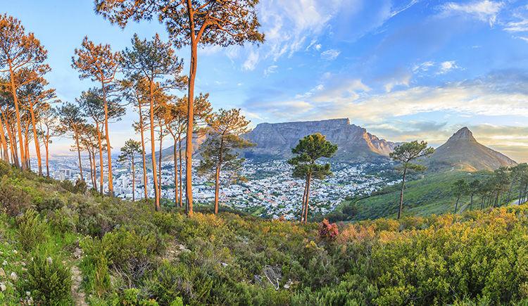 vue sur Le Cap et la Table Mountain