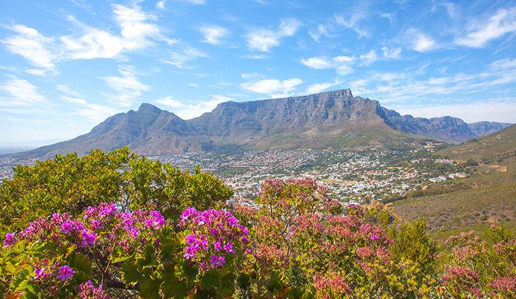 vue sur Me Cap et la Table Mountain