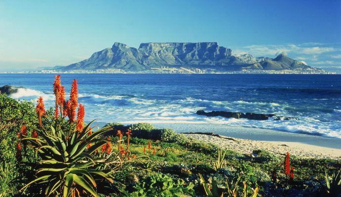 Le Cap & Parc Kruger version luxe