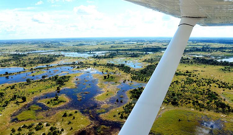 delta d Okavango