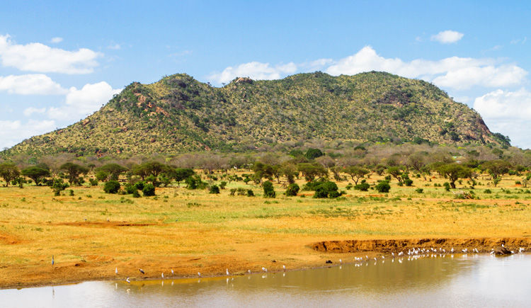 Parc National Tsavo