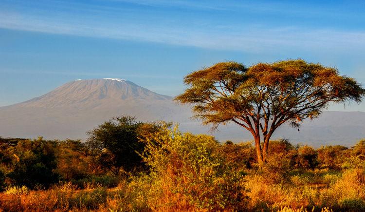 Kilimandjaro vue du Parc Amboseli