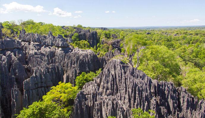 reserve naturelle de Tsingy