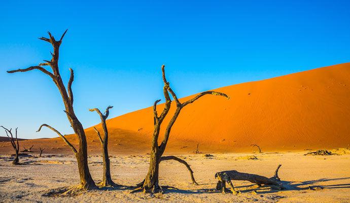 Namibrand : immersion dans le désert version confort
