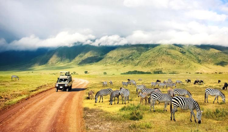 Ngorongoro Park