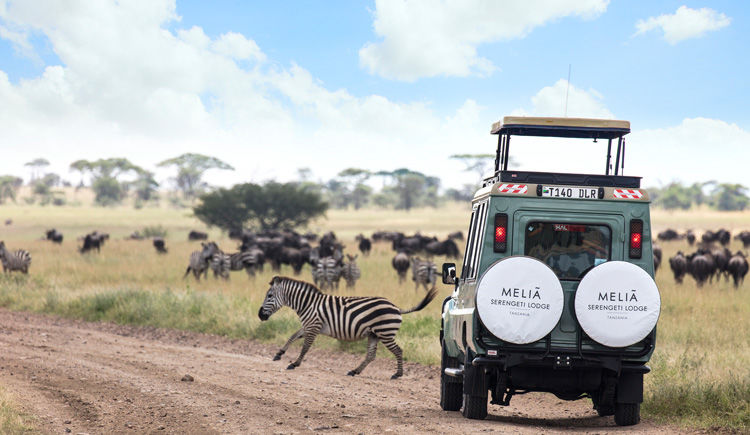 Melia Serengeti safari