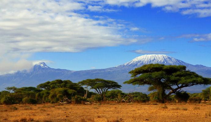 La Tanzanie du Nord au Sud : du Serengeti à la Réserve de Selous