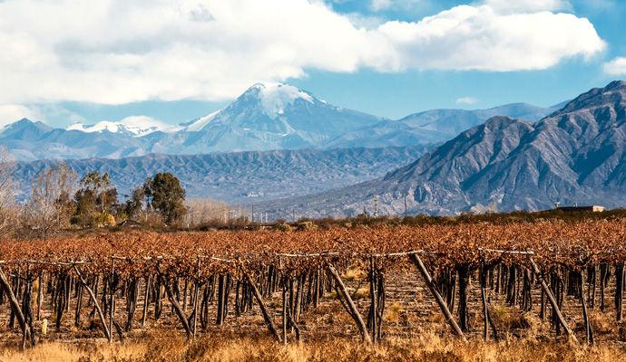 La double route des vins