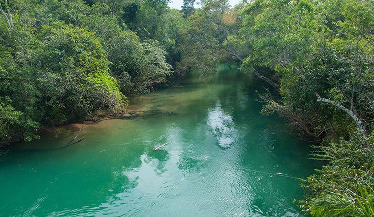 riviere de Bonito