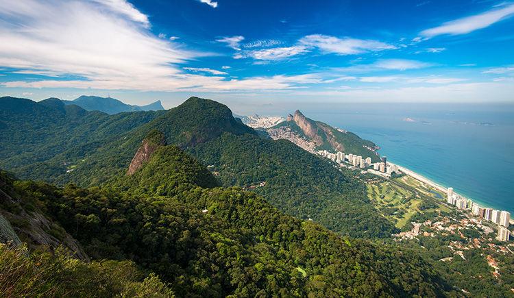 la foret tropicals du Parc National Tijuca