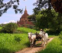 le-grand-tour-du-myanmar-version-superieure