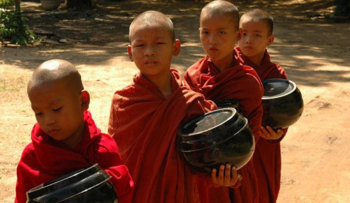 moines birmans