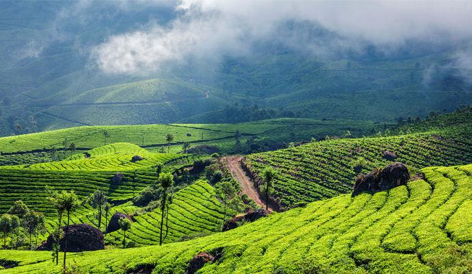 La Magie du Kerala