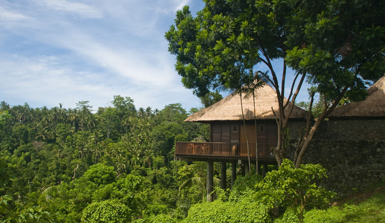 Nusa Dua / Ubud Hôtels Melia Bali et Alila  Alila Valley Villa