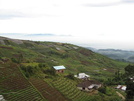 paysage java