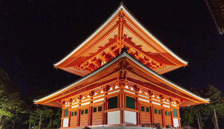 Koya-San Danjo Garan by night