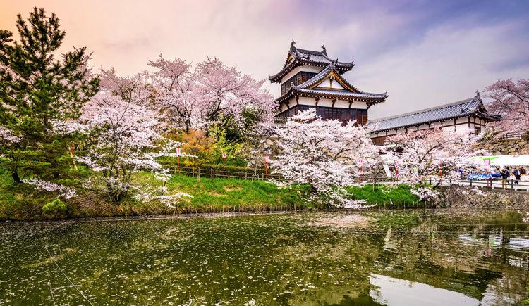 Nara Toriyama Castle
