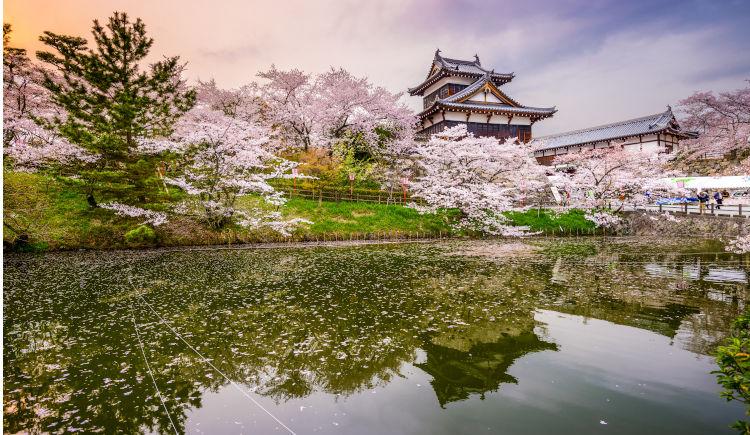 Chateau Toriyama