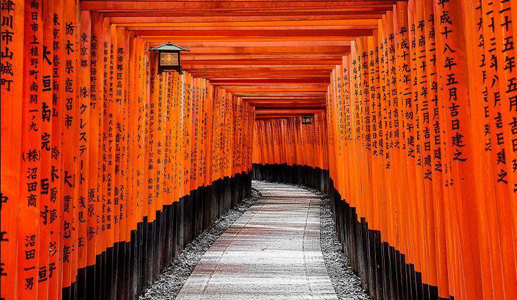 Le Japon, au fil du temps