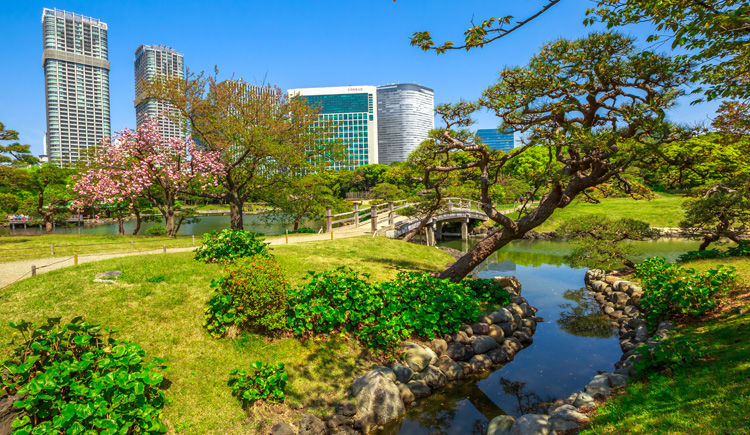 Tokyo Hamarikyu-Teien