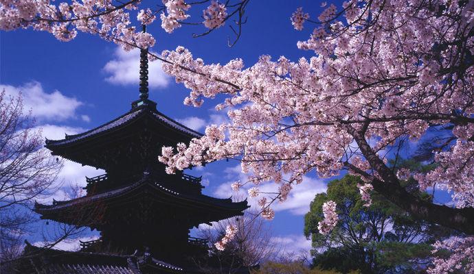Liberté Couleurs Nippones 5 *