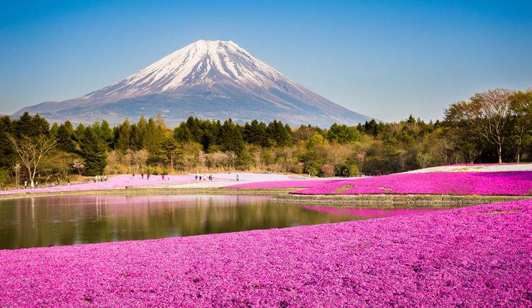 Hakone Mont Fuji