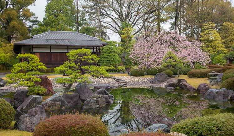 jardin du chateau de Nijo