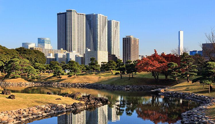 Tokyo jardin Hama-Rikyu