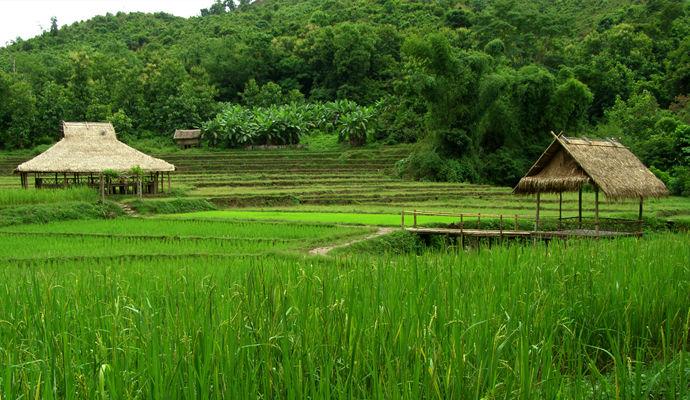 sud du laos