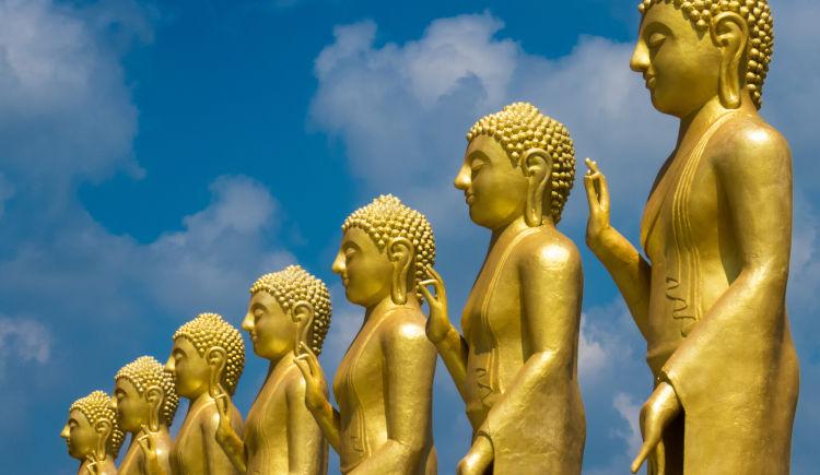 Premiers pas au Sri Lanka