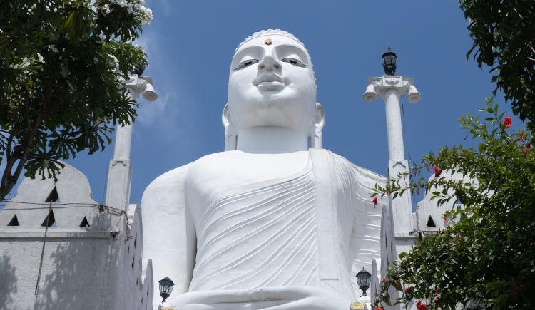 Kandy Budha