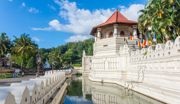 Lessentiel du Sri Lanka en version luxe 5 *