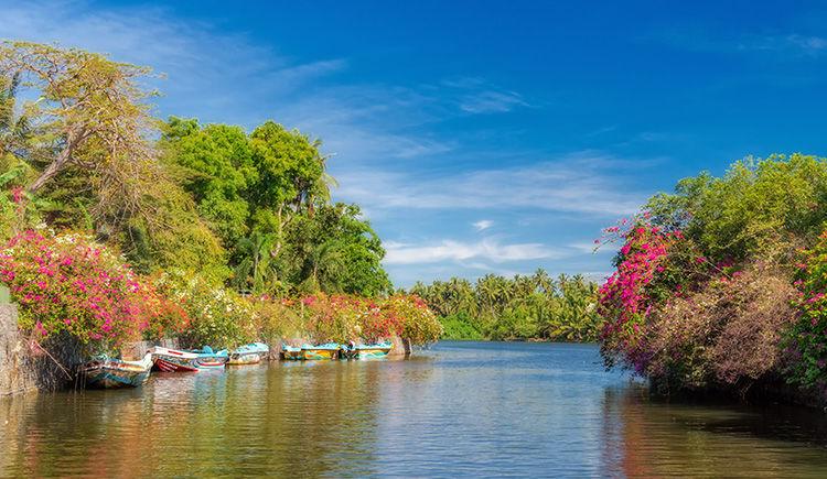 Premier pas au Sri Lanka en version standard