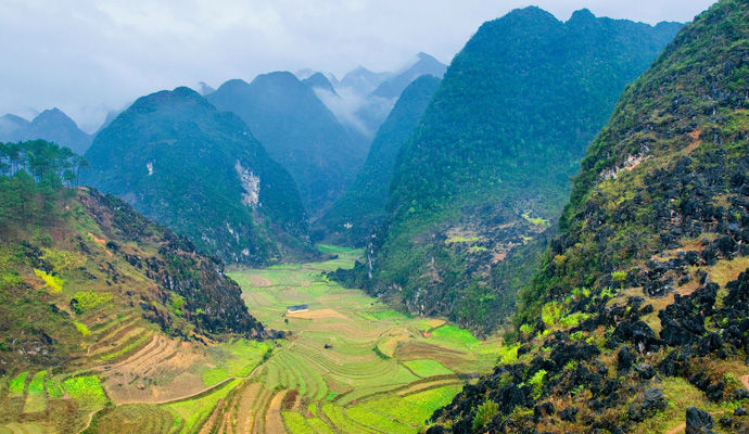 Le toit du Vietnam