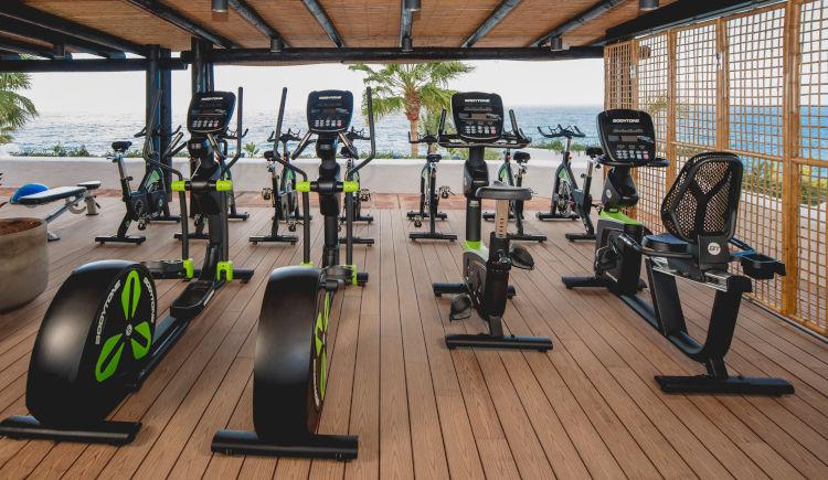 Ocean Gym