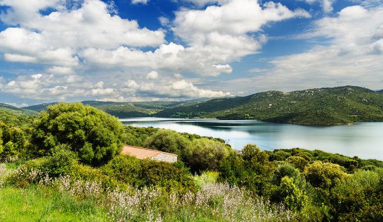 lac Liscia