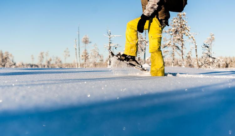 sur la neige