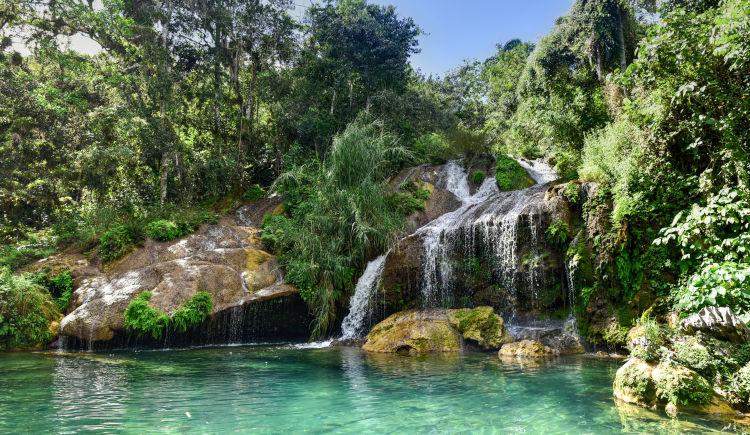 Cienfuegos nature