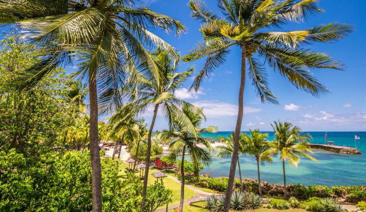 La Créole Beach Hôtel & Spa 4 *