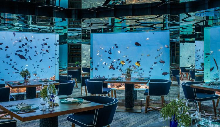 restaurant Sea