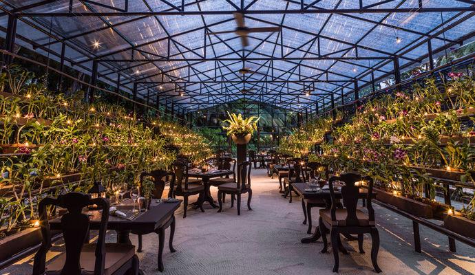 restaurant Botanica maison Orchidee