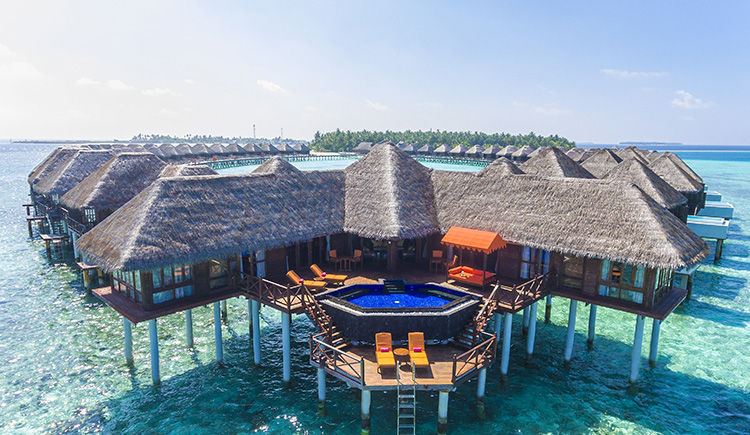 Grand Reef Suite