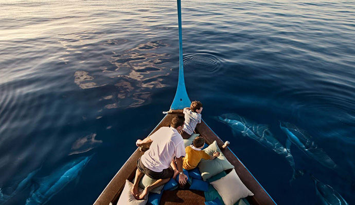 ballade avec les dauphins