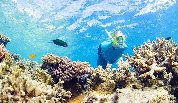 fond sous marin grande barriere de corail