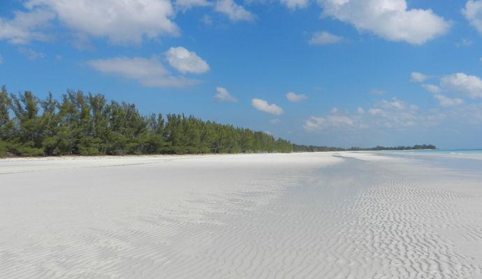 Grand Bahama/Abaco