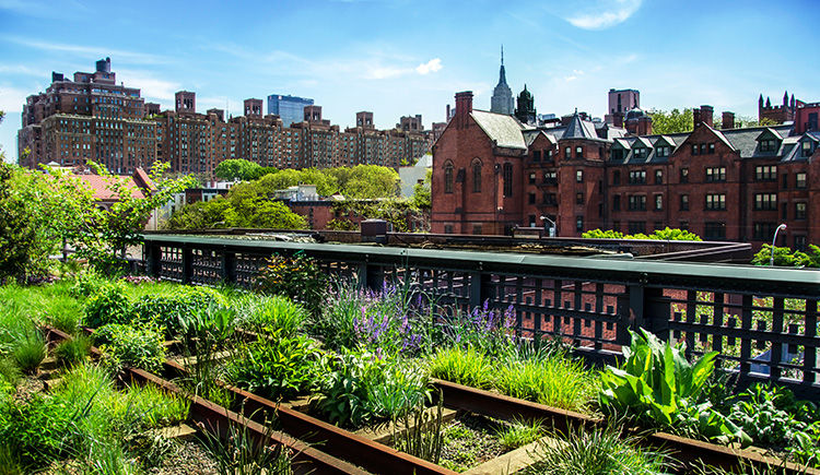 New-York High Line Walk