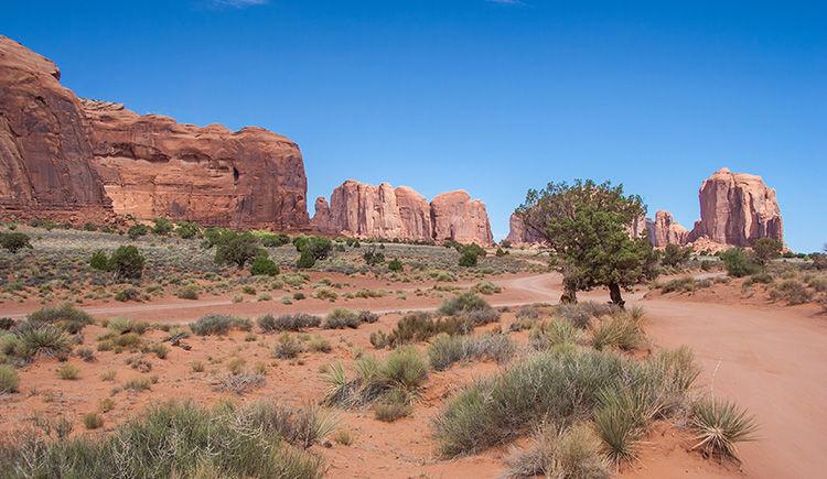 Reserve Navajo