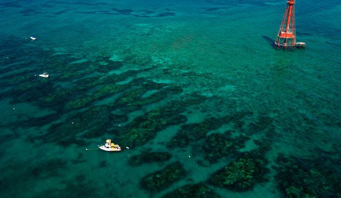 sombrero light reef